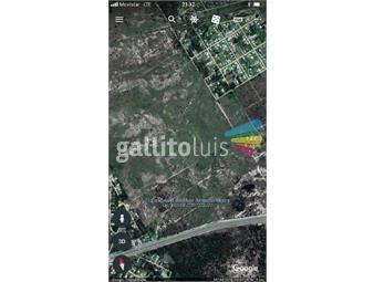 https://www.gallito.com.uy/terreno-en-venta-en-la-floresta-inmuebles-16926621