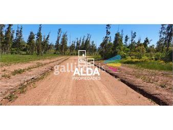 https://www.gallito.com.uy/terreno-en-punta-colorada-inmuebles-17690804