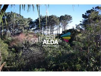 https://www.gallito.com.uy/terreno-en-punta-colorada-inmuebles-17734110