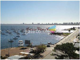 https://www.gallito.com.uy/alquiler-apartamento-6-dormitorios-en-el-puerto-peninsula-inmuebles-17643648