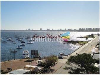https://www.gallito.com.uy/alquiler-apartamento-6-dormitorios-en-el-puerto-peninsula-inmuebles-17643649