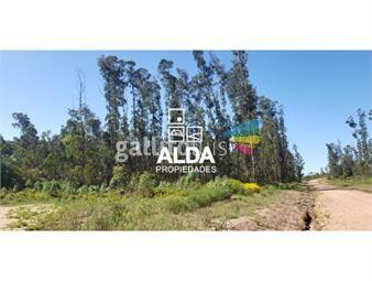 https://www.gallito.com.uy/terreno-en-punta-colorada-inmuebles-14571263