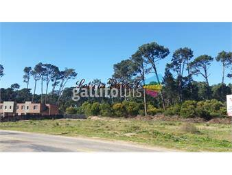https://www.gallito.com.uy/oportunidad-para-inversores-venta-terreno-inmuebles-17652831