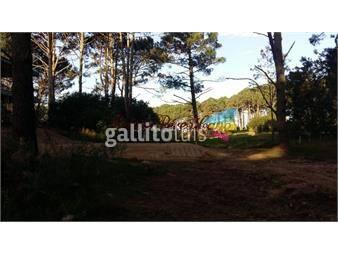 https://www.gallito.com.uy/venta-terreno-en-laguna-del-sauce-inmuebles-17853305