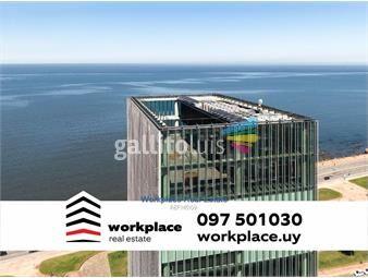https://www.gallito.com.uy/alquiler-oficinas-edificio-clase-aaa-inmuebles-18163788