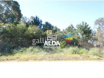 https://www.gallito.com.uy/terreno-en-punta-colorada-inmuebles-14058083