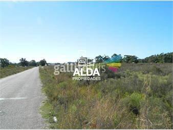 https://www.gallito.com.uy/terreno-en-barra-portezuelo-inmuebles-14067641