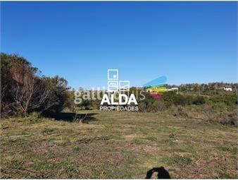 https://www.gallito.com.uy/terreno-en-punta-colorada-inmuebles-17051737