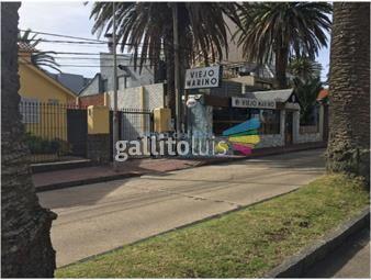 https://www.gallito.com.uy/zona-portuaria-inmuebles-17399933