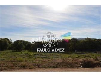 https://www.gallito.com.uy/terrenos-venta-punta-colorada-te282-inmuebles-18761415