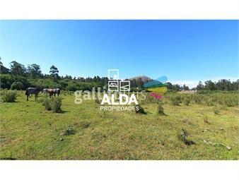 https://www.gallito.com.uy/terreno-en-pueblo-obrero-inmuebles-18022640