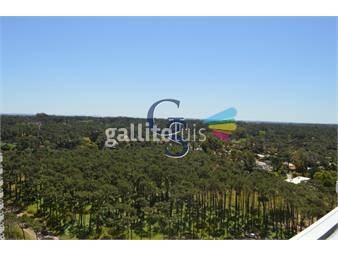 https://www.gallito.com.uy/playa-brava-torre-de-categoria-inmuebles-18266024