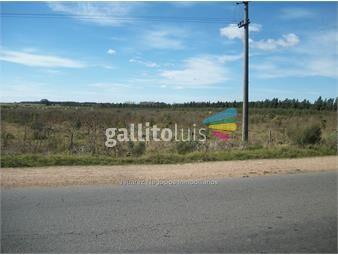 https://www.gallito.com.uy/js-gran-terreno-en-cruce-de-rutas-inmuebles-12572497