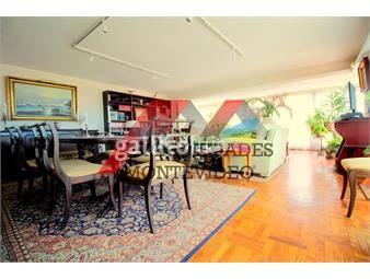 https://www.gallito.com.uy/apartamento-en-alquiler-4-dormitorios-buceo-inmuebles-17750563
