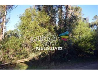 https://www.gallito.com.uy/terrenos-venta-punta-negra-te867-inmuebles-18760820