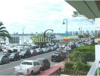 https://www.gallito.com.uy/vista-al-puerto-inmuebles-18265245