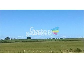 https://www.gallito.com.uy/venta-de-campo-durazno-uruguay-inmuebles-18513536