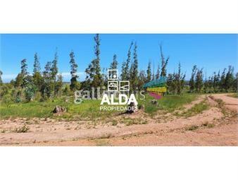 https://www.gallito.com.uy/terreno-en-punta-colorada-inmuebles-18498511