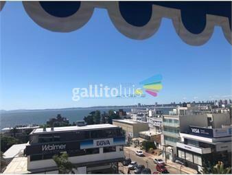 https://www.gallito.com.uy/apartamento-en-oportunidad-en-venta-punta-del-este-inmuebles-18094998