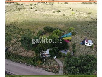 https://www.gallito.com.uy/quinta-en-venta-inmuebles-19033157
