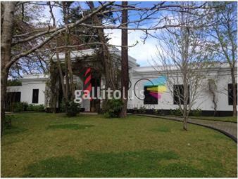 https://www.gallito.com.uy/lugano-exepcional-ubicacion-prã³xima-a-colegios-inmuebles-18924435