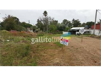 https://www.gallito.com.uy/terreno-en-zona-centrica-inmuebles-19057051