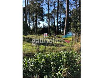 https://www.gallito.com.uy/terreno-en-venta-parque-del-plata-inmuebles-19057092