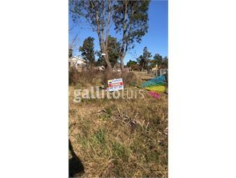 https://www.gallito.com.uy/terreno-en-parque-del-plata-inmuebles-19057093