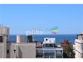 https://www.gallito.com.uy/apartamento-en-peninsula-monoambiente-inmuebles-19065211