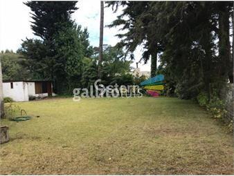 https://www.gallito.com.uy/venta-apartamento-3-dormitorio-playa-mansa-punta-del-este-inmuebles-19066509