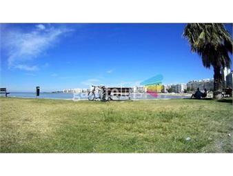 https://www.gallito.com.uy/venta-apartamento-monoambiente-pocitos-nuevo-inmuebles-16742285