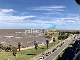 https://www.gallito.com.uy/alquiler-apartamento-con-muebles-rambla-punta-carretas-inmuebles-19073548
