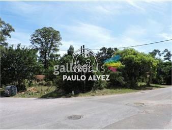 https://www.gallito.com.uy/terrenos-venta-maldonado-te7008-inmuebles-19081058
