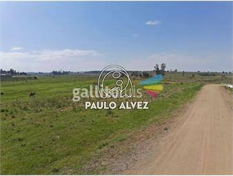 https://www.gallito.com.uy/terrenos-venta-pan-de-azucar-te244-inmuebles-19081340