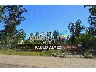 https://www.gallito.com.uy/terrenos-venta-punta-negra-te224-inmuebles-19081485