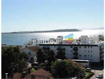 https://www.gallito.com.uy/apartamento-alquiler-temporal-en-peninsula-inmuebles-19073635