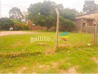 https://www.gallito.com.uy/venta-terreno-shangrila-ciudad-de-la-costa-inmuebles-19088000