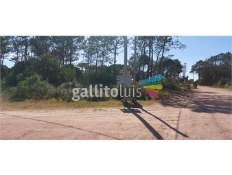 https://www.gallito.com.uy/se-vende-terreno-de-1168-m2-en-punta-del-diablo-inmuebles-19050459