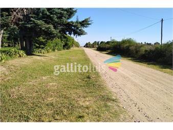 https://www.gallito.com.uy/lotes-con-vista-al-rio-en-balneario-los-pinos-ii-inmuebles-17897062