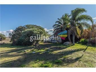https://www.gallito.com.uy/excelente-ubicacion-inmuebles-18770012