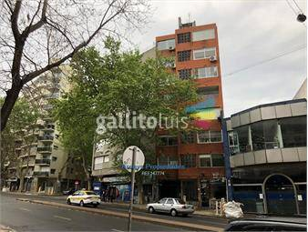 https://www.gallito.com.uy/alquiler-parque-rodo-2-dormitorios-opcion-garage-inmuebles-18443817