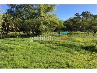https://www.gallito.com.uy/terreno-a-la-venta-de-710-m2-en-carmelo-inmuebles-18521791