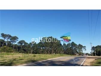 https://www.gallito.com.uy/terreno-maldonado-inmuebles-19097786