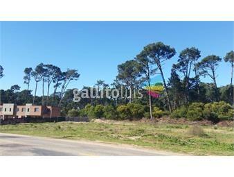 https://www.gallito.com.uy/terreno-maldonado-inmuebles-19097788