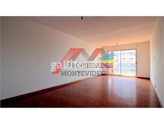 https://www.gallito.com.uy/apartamento-en-alquiler-monoambiente-pocitos-inmuebles-18374292