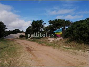 https://www.gallito.com.uy/venta-terreno-ubicacion-unica-frente-a-los-medanos-en-el-pi-inmuebles-19115787