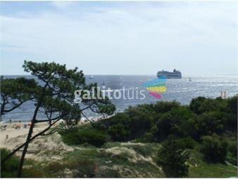 https://www.gallito.com.uy/alquiler-temporario-de-apartamento-1-dormitorio-en-playa-inmuebles-16908575