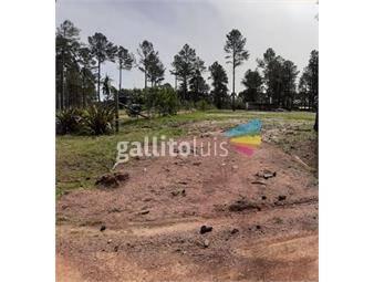 https://www.gallito.com.uy/terreno-en-venta-inmuebles-18231348