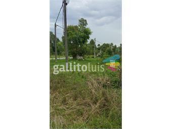 https://www.gallito.com.uy/amplio-terreno-en-venta-inmuebles-19136899