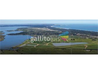 https://www.gallito.com.uy/kosak-punta-deleste-terreno-costa-sobre-laguna-de-los-cisne-inmuebles-19144254